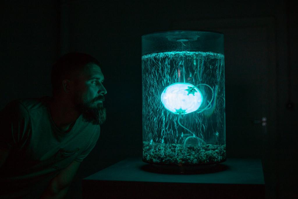 Archaea Bot