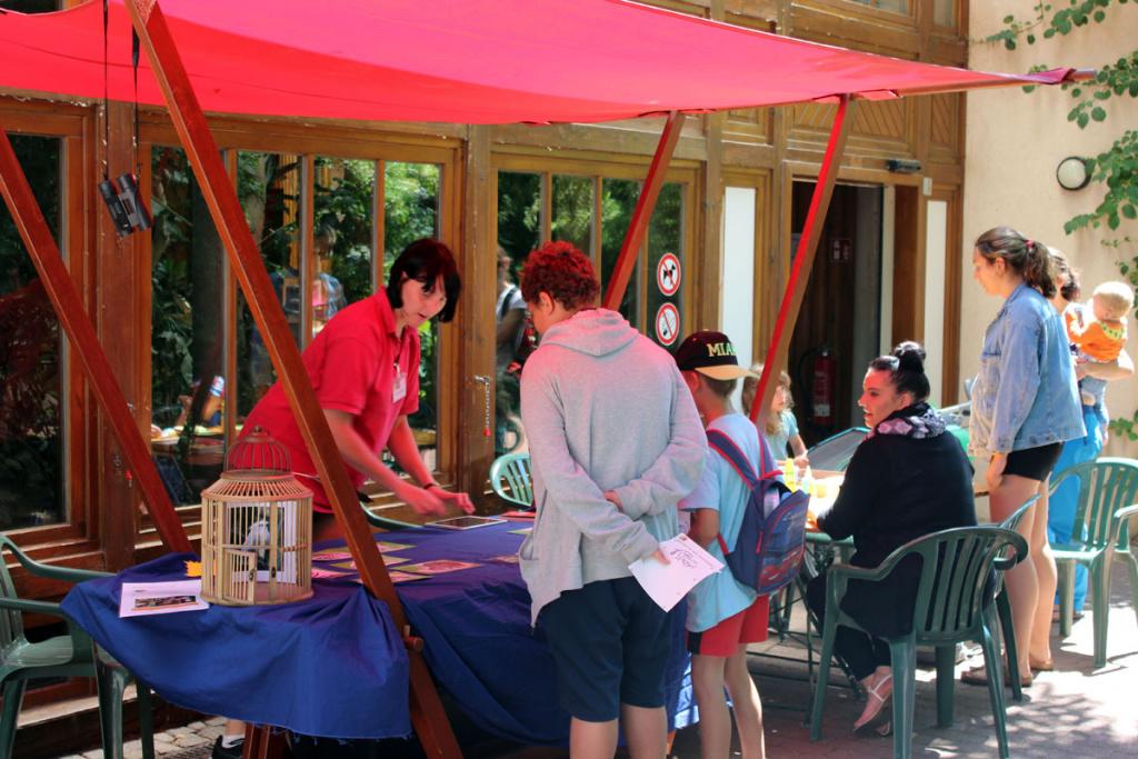 """SILBERSALZ Festival im Zoo / Führung: """"Beziehungskisten im Tierreich"""""""