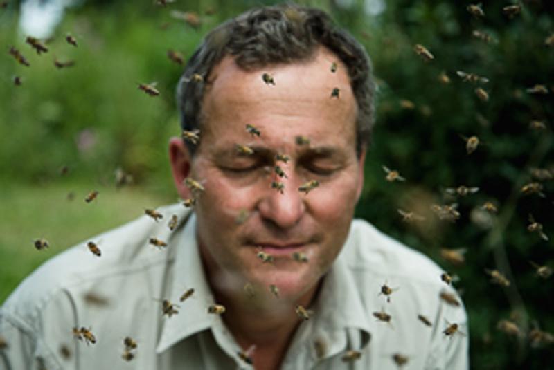 """SILBERSALZ Festival in the Zoo – """"Ecological Beekeeping"""""""