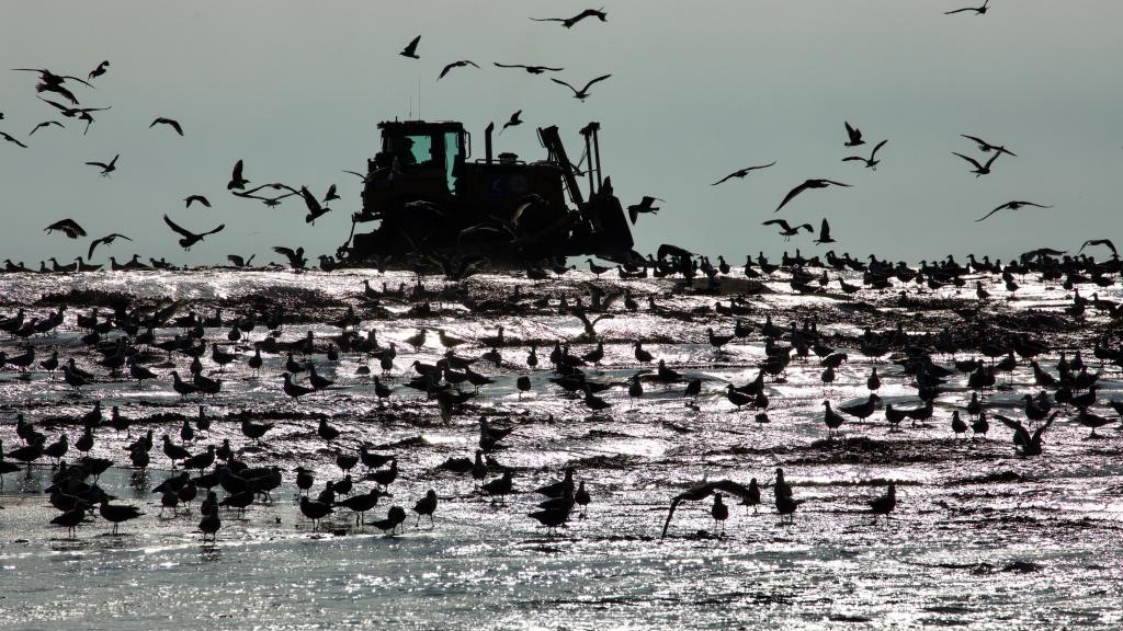 Silence of the Tides | credit: Windmill Films | Silbersalz 2021