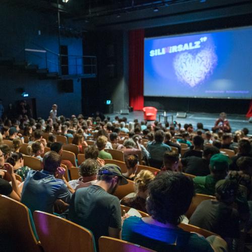 SILBERSALZ Festivalhelfer gesucht 2021
